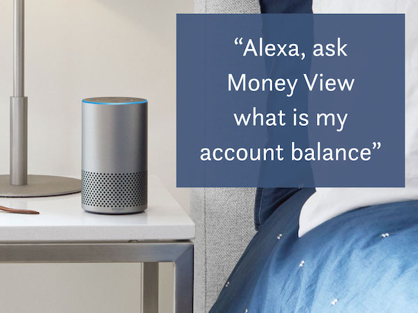 Money View Command on Alexa