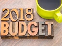 Budget common man