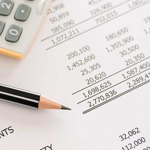 half yearly budget check